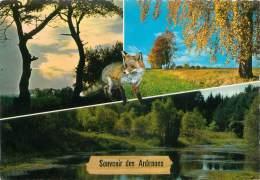 CPM - Souvenir Des Ardennes - België