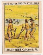 """Image N° 221 De L´album """"L´Asie"""". 1938. Chocolat Pupier. Philippines Culture Riz - Chocolate"""
