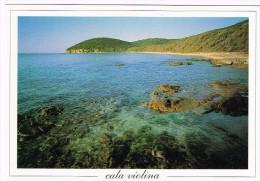 K910 Scarlino (Grosseto) - Cala Violina - Panorama / Non Viaggiata - Italy