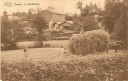 5880 JOUBIEVAL SCIERIE - Vielsalm