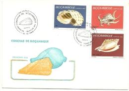PAQUETE - 1� DIA DE CIRCULA��O - CONCHAS DE MO�AMBIQUE