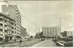 Rotterdam 2 Postcards - Rotterdam