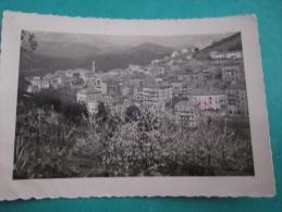 Corse Corsica  Sartene Photo Veritable  20a - Sartene
