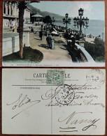 CP N° 381 - Monté Carlo - Terrasses Supérieurs - Colorisée - Animée - Monte-Carlo