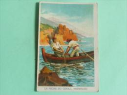 Carte Sur La Peche Du Corail En Méditerranée - Old Paper