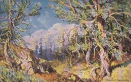 Trees , Mount Lebanon , 00-10s