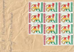 Mali 2013 Macina 100f Independence Anniversary Cover - Mali (1959-...)
