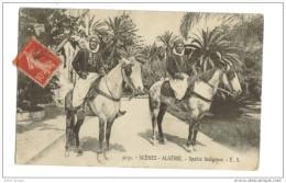 Spahis Indigenes - Algérie
