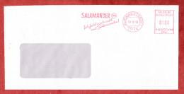 Brief, Francotyp-Postalia B66-4140, Ich Fuehl Mich Wohl Mit Salamander, 100 Pfg, Kornwestheim 1990 (60947) - Covers & Documents