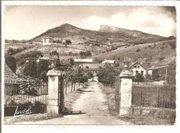 SAINT ALBAN LEYSSE    Chateau Monterminot Et Le Nivolet  No 1   ETAT - Frankreich