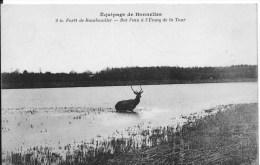RAMBOUILLET : Equipage De Bonnelles,bat L´eau à L´étang De La Tour - Belle CPA Non Utilisée - Rambouillet
