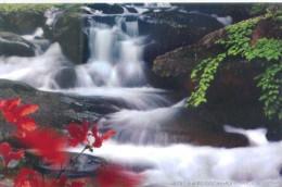 waterfall   , 2007  prepaid card, postal stationery