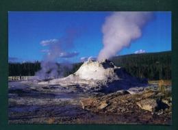 USA  -  Yellowstone National Park  Castle Geyser  Unused Postcard As Scan - Yellowstone