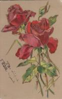 Bouquet Of Red Roses - Fleurs, Plantes & Arbres