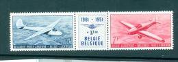 België  Luchtpost  N° 26/27   X  Scharnier  Zegels Xx Postfris Scharnier Op Tussenpaneel - Posta Aerea