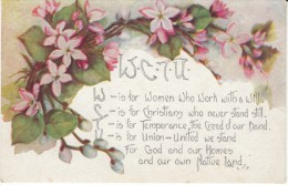 WCTU Womens Christian Temperance Union, Anti- Drinking Organization Social Commentary C1910s Vintage Postcard - Health