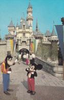 MICKEY AN D GOOFY DISNEYLAND (dil33) - Disneyland