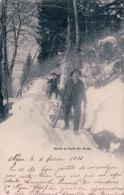 Bûcheron, Descente De Bois En Luge En Hiver (3052) - Paysans