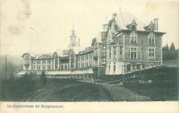 Le Sanatorium De Borgoumont - Stoumont