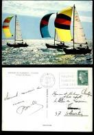 883-bateau-930  Bateaux De Plaisance Voiliers - Voiliers