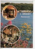 REF 204  CPSM SANARY L'abricot Restaurant - Non Classés