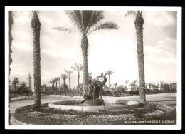 54. Libia. Fontana Della Gazzella - Vera Fotografia ------- Postcard Not Traveled - Libye
