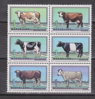 NVPH Netherlands Nederland Niederlande Pays Bas Holanda Sheet Blok MNH ; Koe, Cow , La Vache, Vaca, 2012 - Koeien