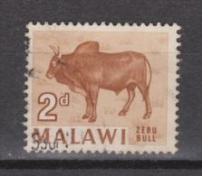 Malawi Used ; Koe, Cow , La Vache, Vaca, Bull, Stier - Koeien