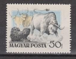 Hongarije, Hungary, Ungarn, Magyar Used ; Koe, Cow , La Vache, Vaca, Bull, Stier - Koeien