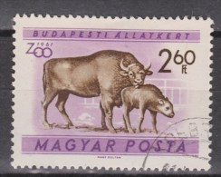 Hongarije, Hungary, Ungarn, Magyar Used ; Koe, Cow , La Vache, Vaca, BANTENG - Koeien