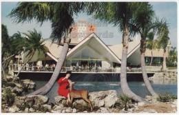 TAMPA FL, BUSCH GARDENS HOSPITALITY HOUSE~WOMAN FEEDING DEER~c1960s vintage Florida postcard