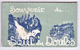 23999 Carnet De 10 Cpsm Petit Format -souvenir Du Saut Doubs - Jed Janin MaicheN°88,105,139,42,96,97,127,185,33,21 - France