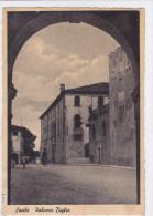 CARD SACILE PALAZZO BIGLIA (UDINE)  -FG-V-2- 0882-21815 - Udine