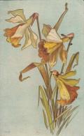 Daffodils On Blue Background - Fleurs, Plantes & Arbres