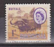 Zimbabwe, Rhodesie, Rhodesia Used ; Buffel, Buffelo, Buffle, Bufalo - Koeien