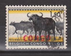 Congo, Belgisch Congo Used ; Buffel, Buffelo, Buffle, Bufalo - Koeien