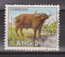 Angola Used ; Buffel, Buffelo, Buffle, Bufalo - Koeien