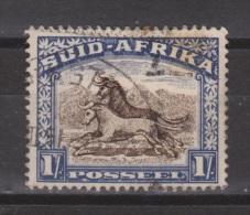 Zuid Afrika South Africa Used ; Buffel, Buffelo, Buffle, Bufalo - Koeien