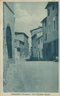 410Ch  Italie Cinigiano Grossetto Via Capitano Bruchi - Italia