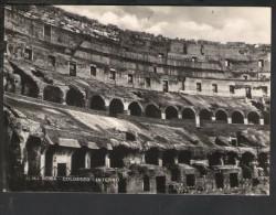 J274 Roma ( Rome, Italie ) Colosseo, Interno - Vera Fotografia - Archeologia, Archeologie, Archeology - Colosseum