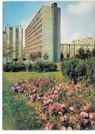 GARGES LES GONESSE - Les Goélands Et La Place Des Vergers - Garges Les Gonesses