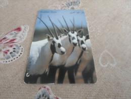 JORDAN - nice phonecard Oryx