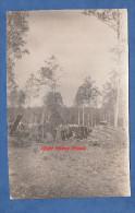 Photo Ancienne - Lieu à Identifier ( Mayenne Ou Orne ) - Hutte De Bucheron / Charbonnier - Bois Forêt - Métiers