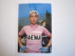 CYCLISME CICLISMO RADSPORT WIELRENNEN :  Eddy MERCKX  FAEMA  Maillot Rose Du Giro   Reproduction - Cycling