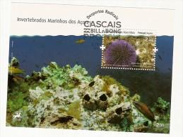 Portugal & Invertebrados Marinhos Dos Açores, Ouriço De Espinhos Curtos  2010 - Blokken & Velletjes