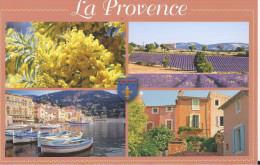 Carte Postale : La Provence. (Voir Commentaires) - France