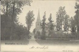 Westerloo.  -  Rond-Environs;  Prachtige Kaart 1902  Naar  Ath - Westerlo