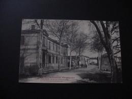 BAZIEGE : CPA - Avenue D´Aiguevives Et Les écoles Communales - ANIMATION - France