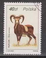 Polen, Poland, Pologne, Polska Used ; Bok, Goat, Chivo, Bouc - Selvaggina