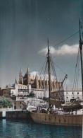 Espagne - Islas Baleares - Palma De Mallorca - Catedral Desde El Muelle - Palma De Mallorca